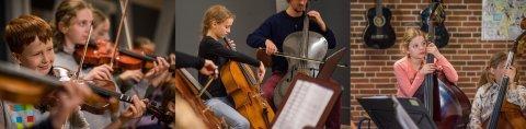 Foto af bratsch, violin, cello, kontrabas