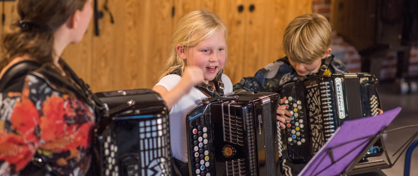 Foto af accordeon